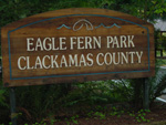 Eagle Fern Park has water, bathrooms and views of the Clackamas River