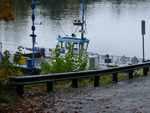 The Canby Ferry arrives to take you across